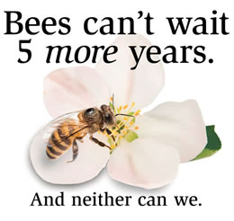 Bees Can't Wait